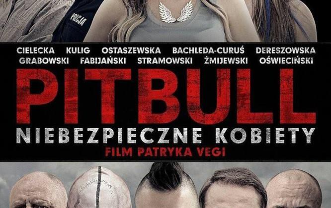 """Pitbull. Niebezpieczne Kobiety w """"Niebieskim Kocyku"""""""