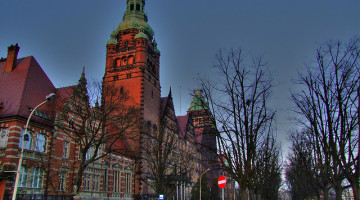 Szczecin, Stewart Williams