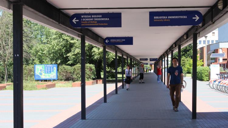 UMK oferuje swoim studentom kilkadziesiąt wykładów ogólnouniwersyteckich.[fot. Paula Gałązka]