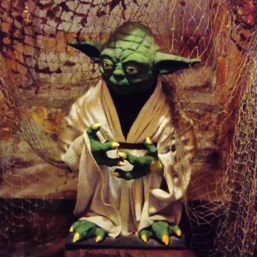 Yoda [fot. Sara Watrak]
