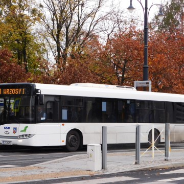 Autobus [fot. Sara Watrak]