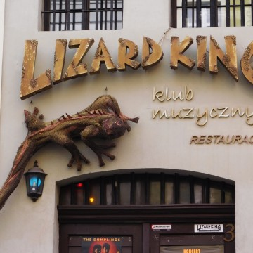 Lizard King4 [fot. Sara Watrak]