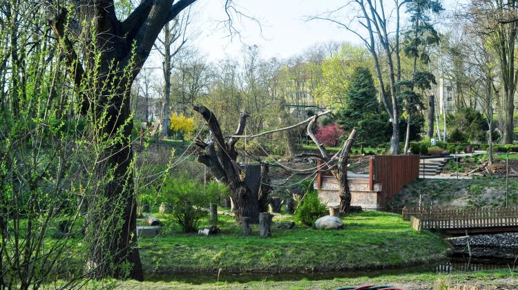Ogród Zoobotaniczny w Toruniu cieszy się z narodzin nowego podopiecznego! [fot. Sebastian Winnicki]