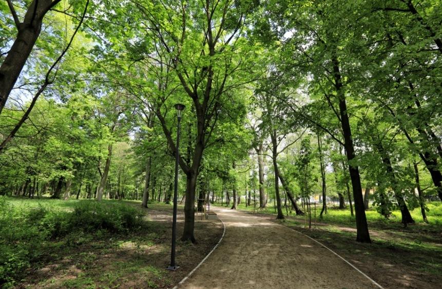 Prace wykonywane w toruńskim Parku Tysiącleciu są już na finiszu! [fot. Sławomir Kowalski - screen ze strony torun.pl]